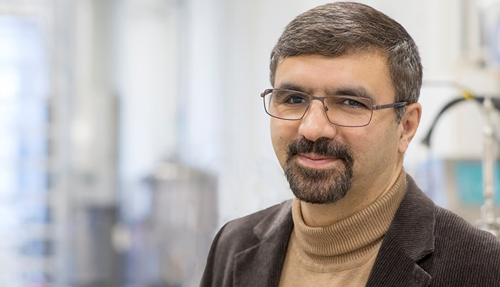 Photo of Mohammad Taherzadeh, Professor